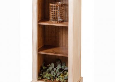38 - Narrow Bookcase - 21 w x 13 d x 48 h